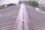 Làm mát nhà xưởng lợp bằng mái tôn