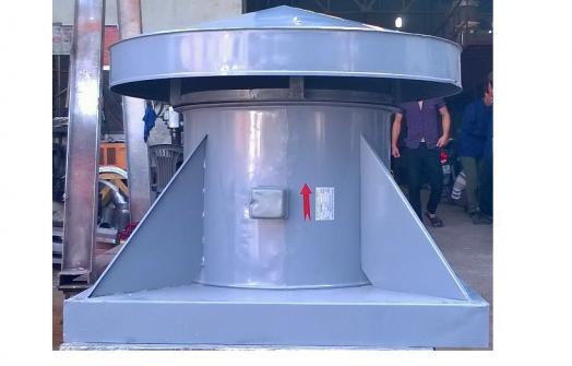 Quạt hút gắn mái  TTAF - 06